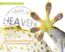 Made in Heaven cover 1ST.indd